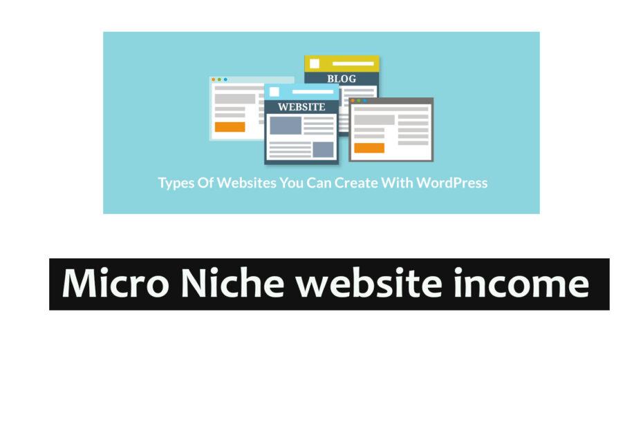 How did I create a Micro Niche Site income money
